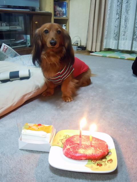 くぅ 誕生日