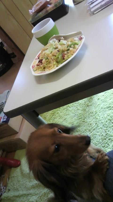 お昼ごはんネタ