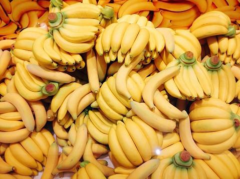 バナナがピンチ~